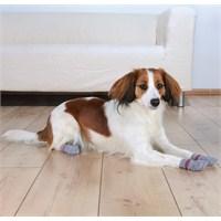 Trixie Köpek Çorabı L-Xl ( German Shepherd )
