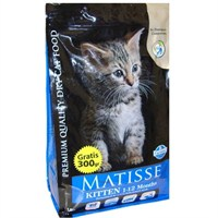 Matisse 1 - 12 Aylık Yavru
