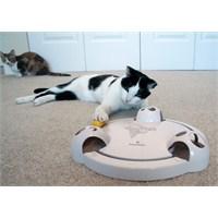 Froli Cat Pounce Interactive Kedi Köpek Oyuncak