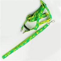 Pet Zoom Kedi Köpek Göğüs Tasması - Yeşil/Sarı