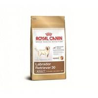 Royal Canin Dogs Labrador Yetişkin Köpek Özel Irk Kuru Maması 12 Kg