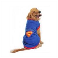 Kemique Superman Tshırt Orta Ve Büyük Irklar İçin