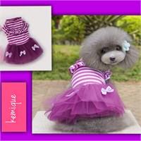 Kemique Stripe Bow Tütülü Elbise - Mor