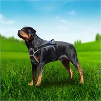 Outdoor Tutacaklı Yansıtıcılı Köpek Göğüs Tasması S Mavi