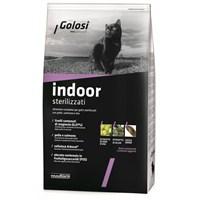 Golosi Cat Indoor Ev Kedileri İçin Somon Balıklı Ve Pirinçli Kedi Maması 400 Gr gk