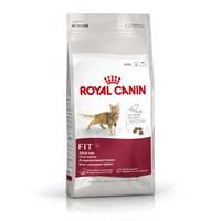 Royal Canin Fhn Fit 32 Yetişkin Kedi Maması 400 Gr