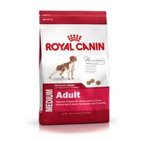 Royal Canin Shn Medium Adult Orta Irk Yetişkin Köpek Maması 10Kg