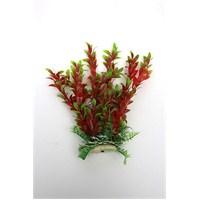 Natural Coral Plastik Bitki 25 Cm