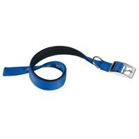 Ferplast Daytona C15/35 Köpek Boyun Tasması Mavi Renk