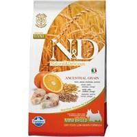 Farmina N&D Düşük Tahıllı Morina Balığı&Portokallı Küçük Irk Yetişkin Köpek Maması 2,5 Kg