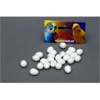 Kuş Oyuncağı Sahte Yumurta 25Li