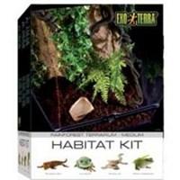 Exo Terra Yağmur Ormanı Teraryum Set Kit M