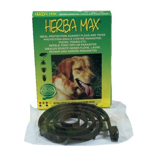 Herba Max Köpek Pire Tasması