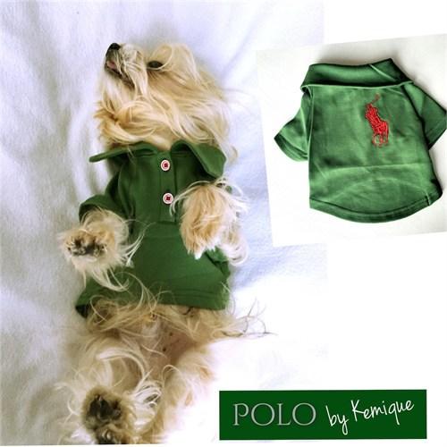 Polo By Kemique Tişört Yeşil Xl