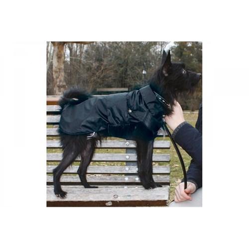 Köpek Yağmurluk (Montreal) 55 Cm