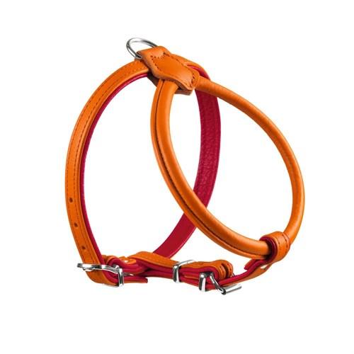 Hunter Round&Soft Rio Petit Deri Köpek Göğüs Tasması 27 Cm X 32-38 Cm Turuncu