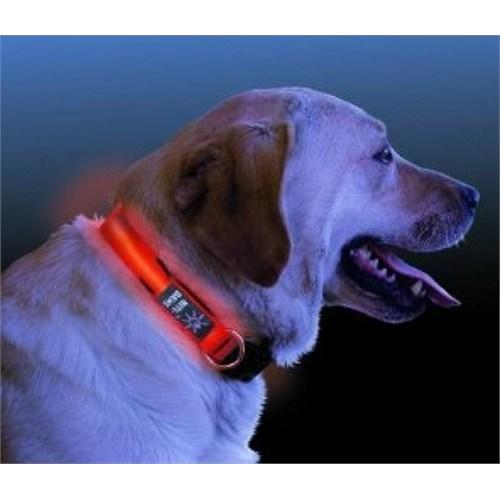 Buffer Işıklı Köpek Tasması