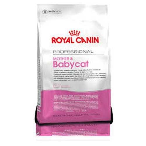 Royal Canin Babycat Yavru Kedi Maması 10Kg