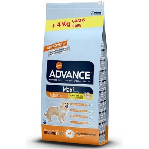 Advance Dog Maxi Adult Büyük Irk Yetişkin Köpek Maması 14 Kg + 4 Kg