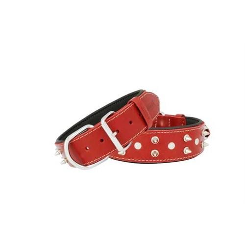 Doggie Comfort Çivili Deri Boyun Tasması 4,0X65 Cm Sbt-4012