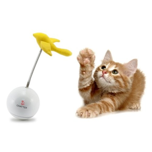 Froli cat Chatter Kedi Oyuncağı