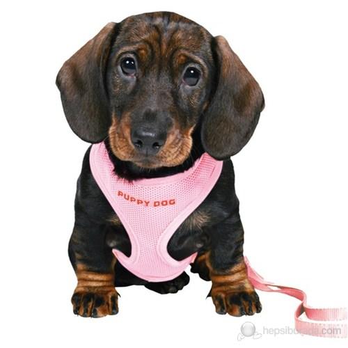 Trixie yavru köpek göğ.tasma&kyış,23-34cm/2m/10mm