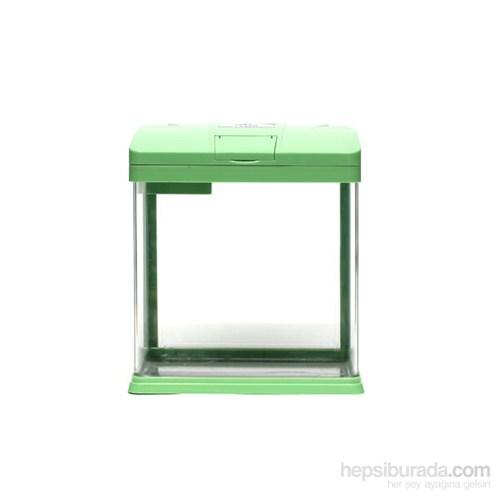 Seastar Akvaryum Yeşil Zf