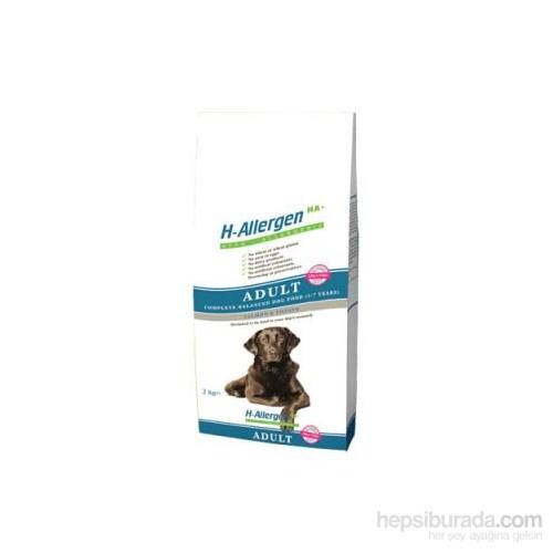 First Class Hypoalerjenik Somonlu Patatesli Yetişkin Köpek Maması 2 Kg