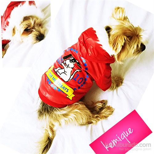 Kemique Gıve Me Treats Köpek Montu - Kırmızı
