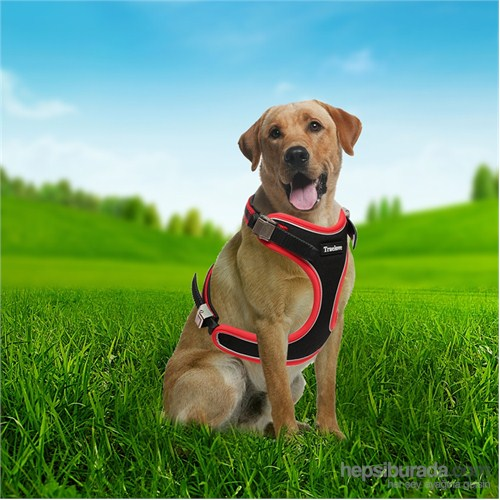 Outdoor Ergonomik Yansıtıcılı Köpek Göğüs Tasması M Kırmızı