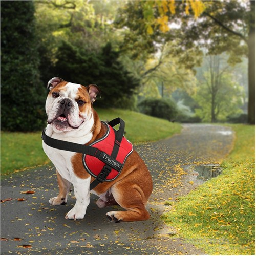 Outdoor Yansıtıcılı Köpek Göğüs Tasması S Kırmızı