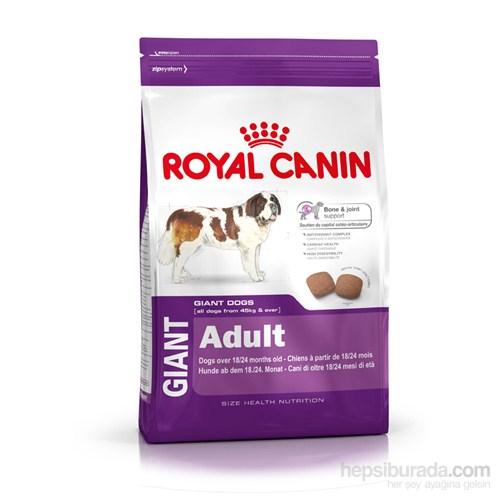 Royal Canin Shn Gıant Adult Dev Irk Yetişkin Köpek Maması 15 Kg