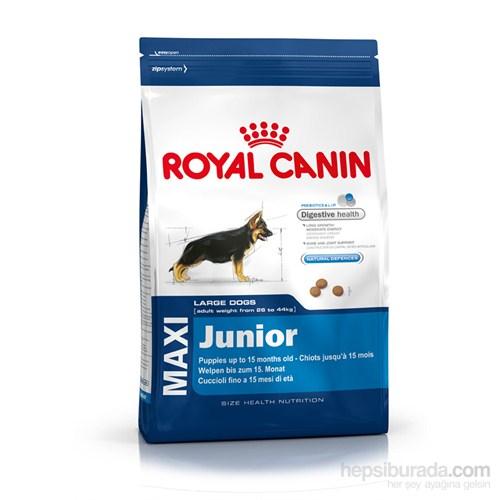 Royal Canin Shn Maxi Junior Büyük Irk Yavru Köpek Maması 15 kg