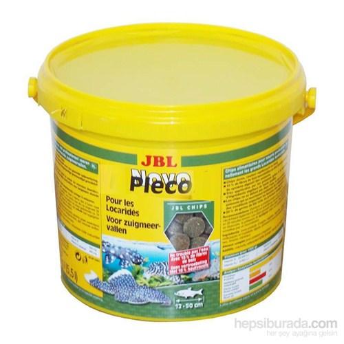 Jbl Pleco 5.5 Lt 2900 Gram