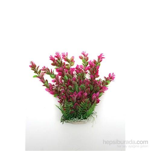 Natural Coral Plastik Bitki 35 Cm