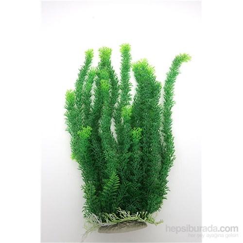 Natural Coral Plastik Bitki 52 Cm
