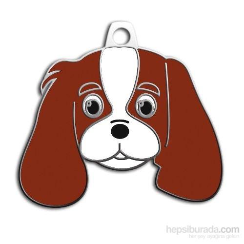 Dalis Pet Tag - Cavalıer Kıng Charles Köpek Künyesi (İsimlik)