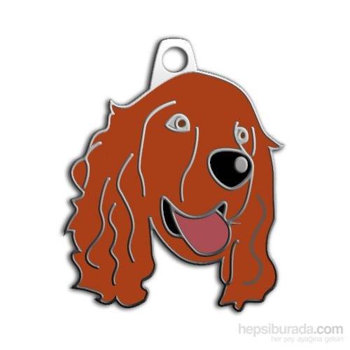 Dalis Pet Tag - Cocker Köpek Künyesi (İsimlik)
