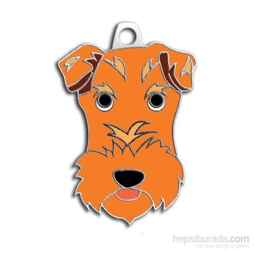 Dalis Pet Tag - Fox Terrıer Köpek Künyesi (İsimlik)