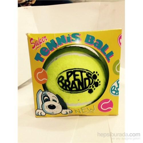 Lion Tenis Topu Köpek Oyuncağı