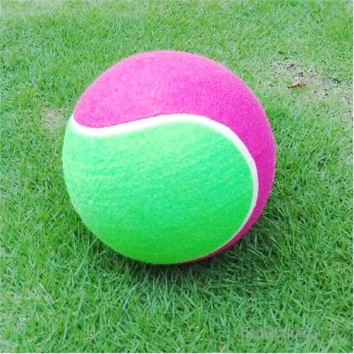 Lion Köpek Oyuncağı Jumbo Şişme Tenis Topu