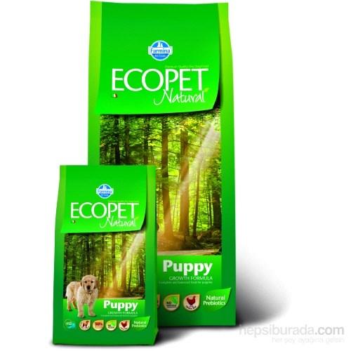 Ecopet Natural Tavuk Etli 12 Kg Yavru Köpek Maması