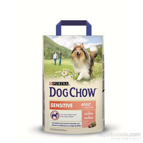 Purina Dog Chow Adult Somonlu Hassas Yetişkin Köpek Maması 14 KG