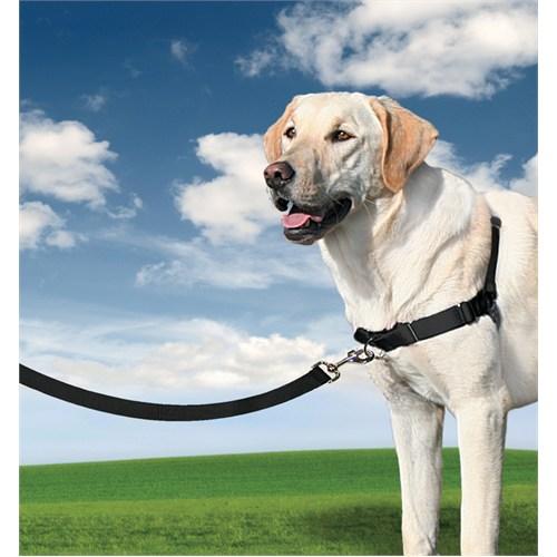 Easy Walk™ Harness - Large Siyah Köpek Tasması