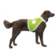 Nobby Köpek Fosforlu Güvenlik Yeleği M