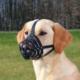 Julius K9 Muzzle Extra Sağlam Deri Köpek Ağızlığı S-M 20 Cm