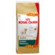 Royal Canin Golden Retriever Junior 12 Kg + 2 Kg