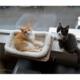 Vip Sunny Seat Cama Asılan Kedi Yatağı