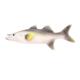 Euro Flora Balık 47X6X12 Cm