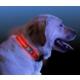 Pratik Işıklı Köpek Tasması
